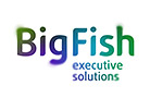 BigFish - executive solutions